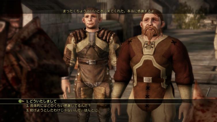 Dragon Age: Origins (JP) Screenshot 3